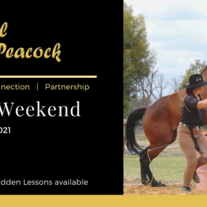 Private Lessons with Mel Peacock
